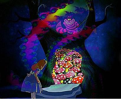 Trippy Dope Psychedelic Acid Lsd Alice Wonderland