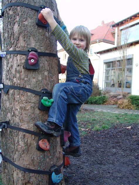 theyre  ape  monkeys  climbing product