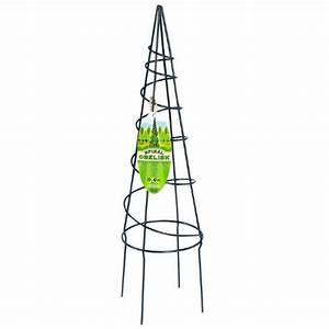 Support Plantes Grimpantes : support en spiral pour plantes grimpantes obelisque ~ Dode.kayakingforconservation.com Idées de Décoration