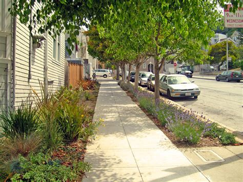 sidewalk landscaping sidewalk landscaping sf better streets