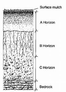 Schematic Presentation Of Hypothetical Soil Profile 23