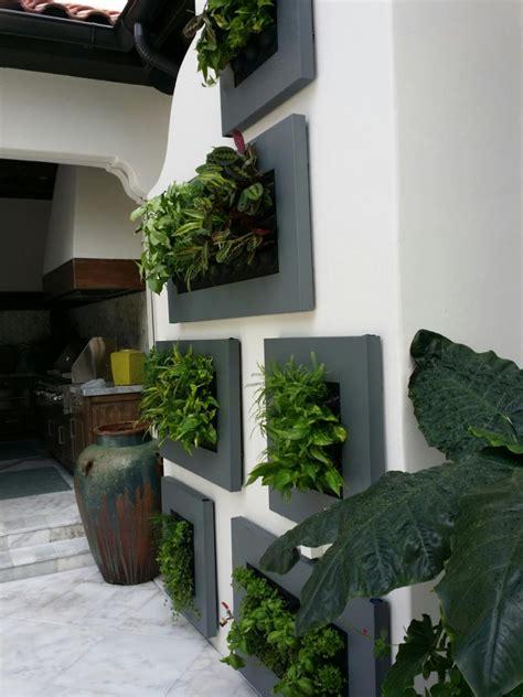 orlando residence green wall foliage design systems
