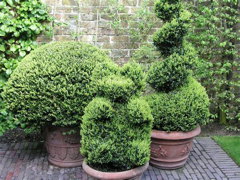 Mit Buchsbaum by Buchsbaum Schablone Selber Machen Schablone F R Buchsb
