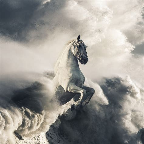wallpaper pegasus white horse clouds waves hd