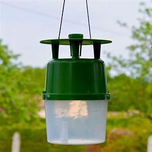 Pyrale Du Buis Traitement Bayer : insecticides pour agriculture comparez les prix pour ~ Dailycaller-alerts.com Idées de Décoration