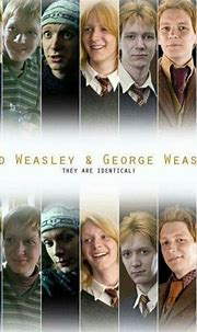 The Professors Assistant (Severus Snape X Reader ...