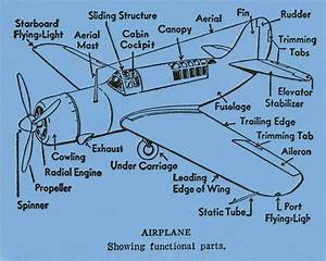 Airplane Diagram Functional Parts Flying Green By