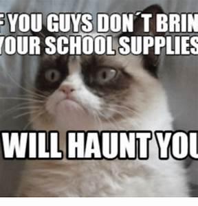 25+ Best Memes About Grumpy Cat School | Grumpy Cat School ...