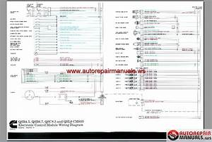Cummins Ism Ecm Wiring Diagram