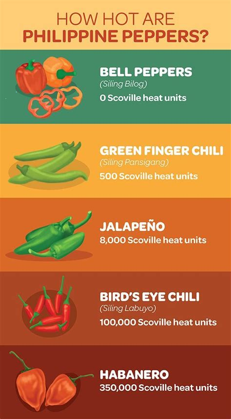 how hot are philippine chili peppers