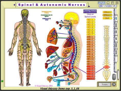 framework cure  dystonia