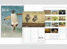Wildlife Photography Calendar ModRed Design