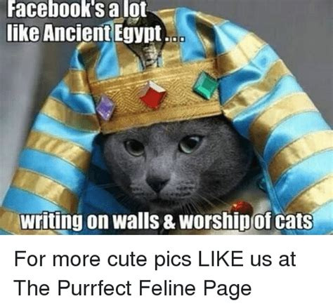 Egyptian Memes - facebook s a lot like ancient egypt writing on walls worship of cats for more cute pics like