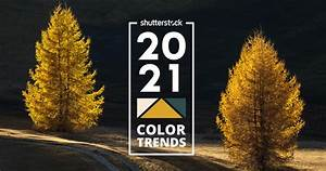 2021, Colour, Trends, Designers, Opting, For, Softer, Glowing
