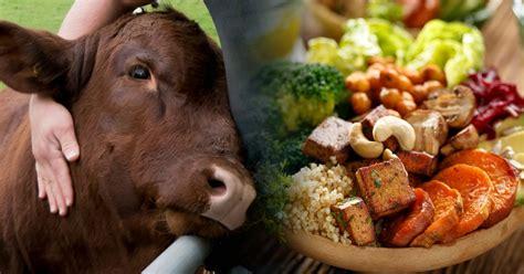5 libros sobre veganismo que te ayudarán a comenzar una ...