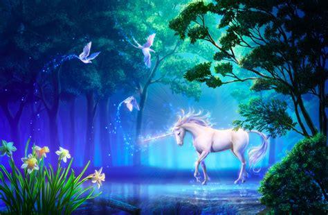 Unicorn Full Hd Wallpaper And Background Image 2000x1310