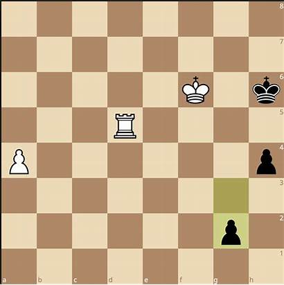 Chess Endgame Win Step Three