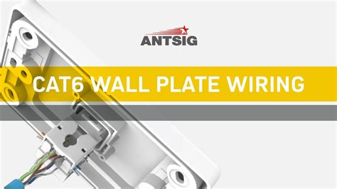 antsig   wire  cat wall plate youtube