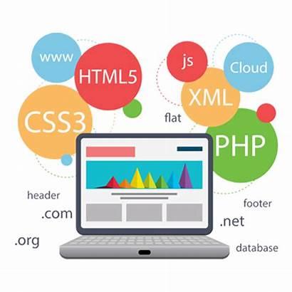 Web Designing Creative Brochure