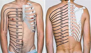 Beaumont, pain, management Specialists Chronic, pain, clinic Spine
