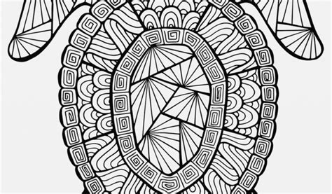 sea turtle coloring pages  adults  getcoloringscom
