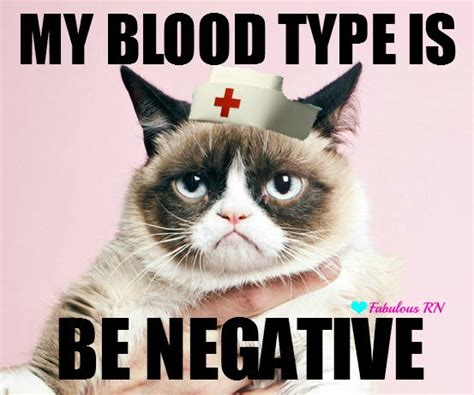 Grumpy Cat Love Meme - lol so true on pinterest dory quotes lolsotrue and so me
