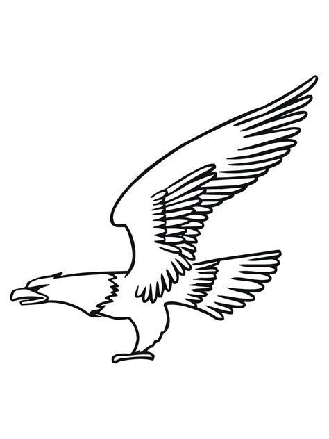 printable bald eagle coloring pages  kids
