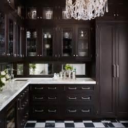 Mirror Backsplash In Kitchen Mirror Backsplash Traditional Kitchen De Giulio Kitchen Design