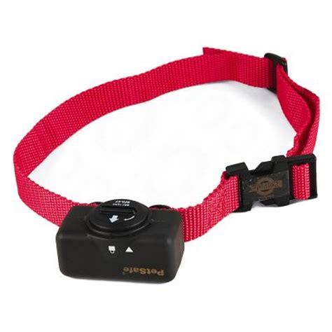 petsafe wireless collar collier anti aboiement statique pour chien petsafe