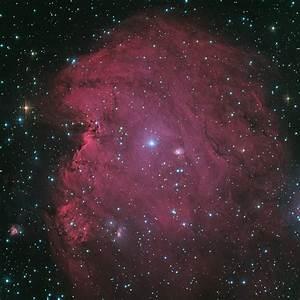 Monkey Head Nebula - Pics about space