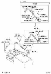 2002 Toyota Highlander Hose  Fuel Vapor Fee  Engine