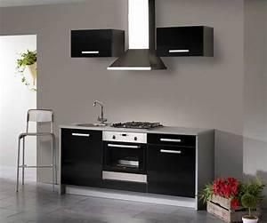 Kleine Küchenzeile Ikea : kleine k chenzeile mit grau korpus und schwarz hochglanz ~ Michelbontemps.com Haus und Dekorationen