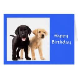 Happy Birthday Labrador Retriever Puppies