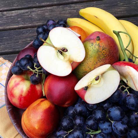 top  tasty  healthy treats  birds love