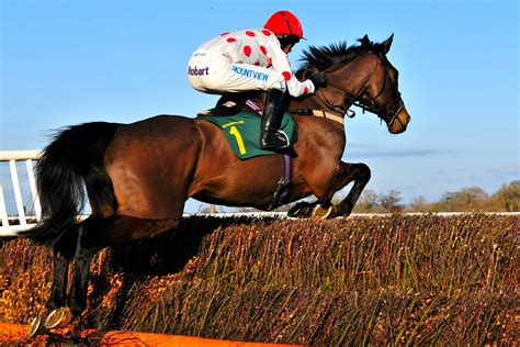 jumping horse close fence racing jumps national race