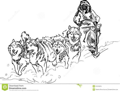 sled dog coloring pages | Stock Photo: Alaskan sled dogs ...