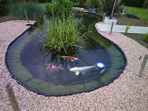 Bulleur Pour Bassin : pr sentations des bassins pour concours ~ Premium-room.com Idées de Décoration