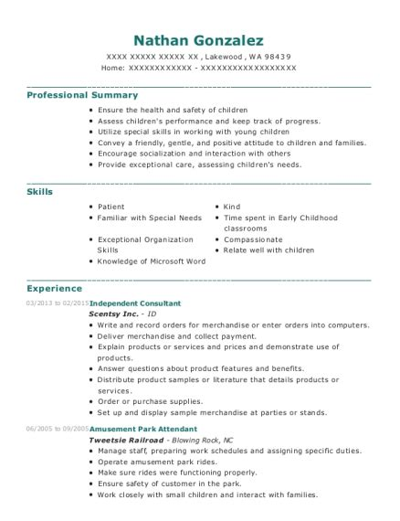 employed independent consultant resume sample