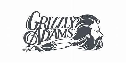 Adams Grizzly Culture Pop Bear Bears Gray