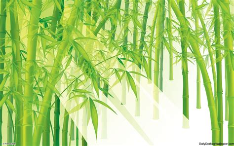 Anime China Keren High Resolution Bamboo Wallpaper Hd Wallpapers