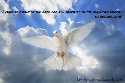 bible quotes about doves quotesgram
