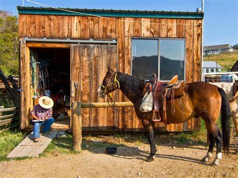 yellowstone horseback riding ranch horse near