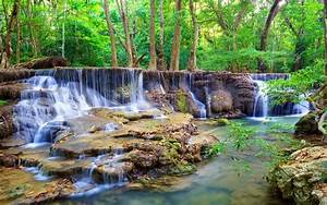 Waterfalls, Forests, Stones, Nature, Wallpapers, And, Photos