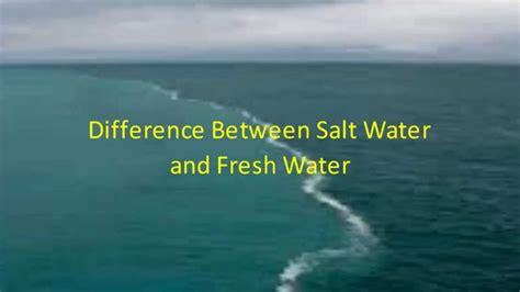 Difference Between Salt Water And Fresh Water  Youtube. Settlers Motel. Hesperia Bilbao Hotel. Beechwood Lodge New Zealand. Rawai Palm Beach Resort. Hotel Hakodate Royal. Cromwell Lodge Hotel. Saree Samui. Best Western Laguna Beach Hotel