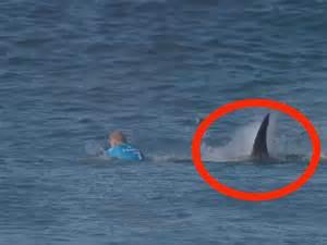 Great White Shark Attacks Surfer