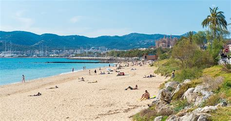 Hotel Karte Playa De Palma