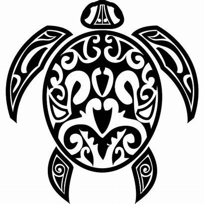 Hawaiian Turtle Sea Clipart Clip Turtles Clipartpanda