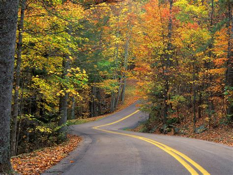 Autumn Roads Wallpapers by Autumn Road Nature Wallpapers Wallpapers High