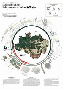 Land Exploitation In Brazilian Amazon  Infographic By