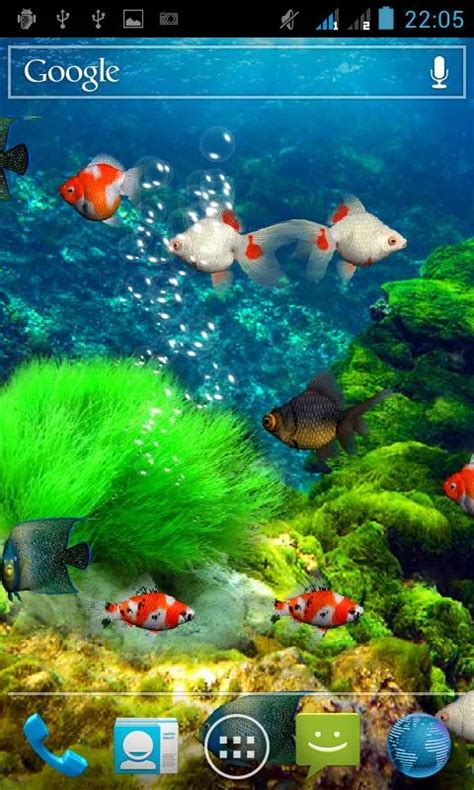 akvarium zhivye oboi skachat akvarium zhivye oboi na